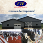 Strauss Veal Feeds