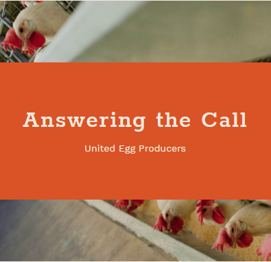 look-east-answering-the-call-uep-blog